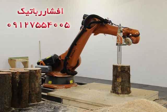 فروش ربات پیکرتراش