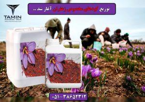 کود زعفران.saffron Fertilizer.قیمت کود زعفران.کود زعفران مشهد زیر قیمت